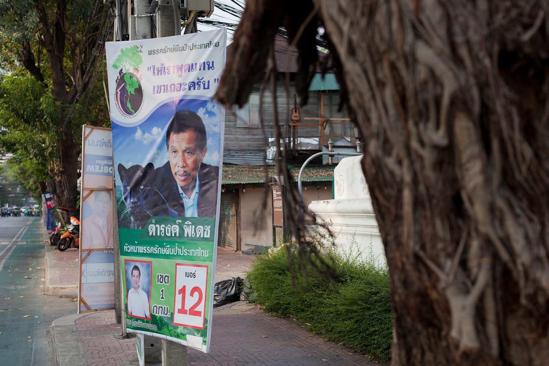 """Phak Rak Phuenpa Prathet Thai (Thai Forest Conservation Party): """"Let us speak for the mountains [i.e. the environment]."""""""